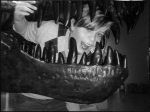 DinoCubus – Ein virtuelles Museum im Japanischen Palais